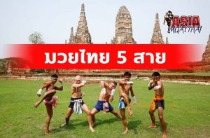 มวยไทย 5 สาย